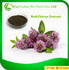 100% Pure Red Clover Extract powder