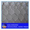 Cheap!!! hot sale Chicken hexagonal wire mesh/anping hexagonal mesh with pvc coated