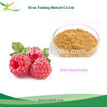 Raspberry Fruit Extract, Rubus idaeus extract, Fructus Rubi extract