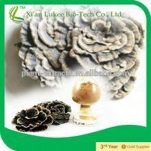 Coriolus Mushroom/ Yunzhi Extract (10%-40%polysaccharides)