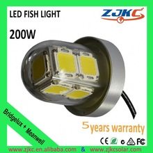 5 years guarantee IP68 light stick fishing