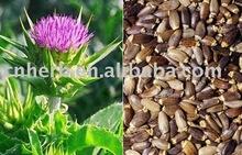 dried clean Milk Thistle seeds