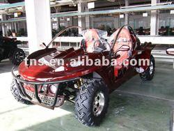 Buggy 800CC