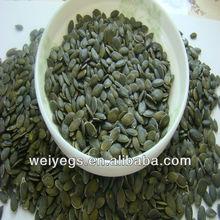 2014 good quality shine skin pumpkin seed kernels grade AA MADE IN CHINA