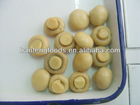 canned whole button mushroom