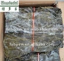 Dried kelp seaweed raw materials, whole kelp/lamiaria japonica leaf(length:60-80cm) in bulk