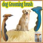 dog brush gromming