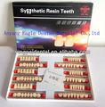 Super Hard 2 camada Dental dentes de acrílico com o serviço de OEM