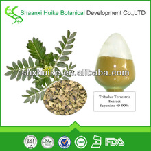 Factory supply 100% Natural 40%-90% saponins from Tribulus Terrestris Extract
