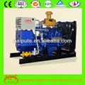 Alto rendimiento metano gas motor generador 10kW-500kW