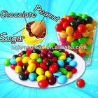 Peanut Chocolate/Stone Chocolate/Sunflower Seed Chocolate/Chocolate Beans