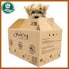 Multi-wall corrugated cardboard pet carrier box