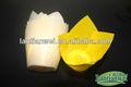 de color amarillo tulipán torta de la taza para la panadería