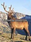 Velvet Deer Antler Extract 10:1