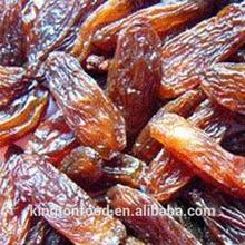 low price red dried raisin /sultana