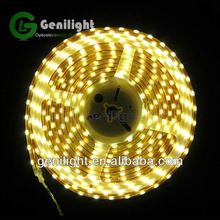 Wholesale High Quality 5050 LED Strip Light