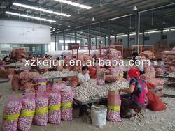 Chinese Fresh Natural Garlic