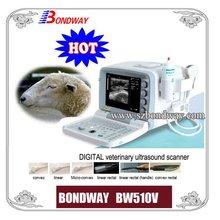 Farm Animal Ultrasound Scanner(BW510V), livestock image, veterinary pregnancy imaging, USB, ultrasound diagnostic imaging