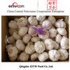 2014 Garlic Supplier China Fresh Natural Garlic