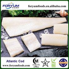 Frozen Alaska Pollock/Atlantic Cod/Pacific Cod Fillet