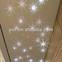 LED Light Starry Sky Lighting , Light Cable , Fiber optic decoration