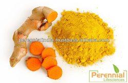 Natural Turmeric Extract, Curcumin 95% / ISO Curcumin Extract 95% by HPLC / Natural Curcuma Longa Extract 95%