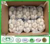 2014 Garlic Price In China