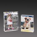 personalizado e elegante em forma de acrílico transparente e mulheres sexo animal photo frame