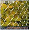Green Chain Link School Playground Fence