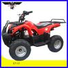 500W-800W 36V Electric ATV(E7-13)