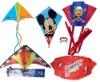 kite boarding kite/kite surfing kites