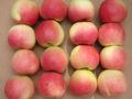 2013 venda quente fresco chinês royal gala apple com melhor qualidade& menor preço!!!