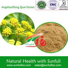 china Angelica/Dong Quai P.E. bulk