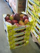 Plantation foldable carton fruit box for mango and apple/la mango y manzana caja
