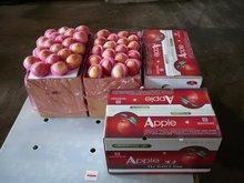 fresh natural fuji apple for wholesale importers
