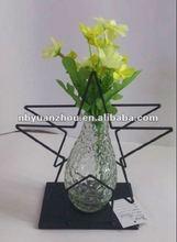 X'mas Glass flower Vase with star metal holder