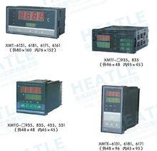 2012.HS.XMT-700/XMT-600 double figures show intelligent temperature instruments