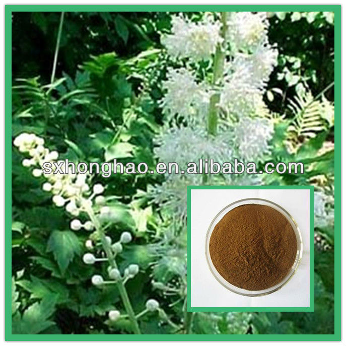 Natural Standardized 2.5%-8% Triterpene Glycosides Black Cohosh powder