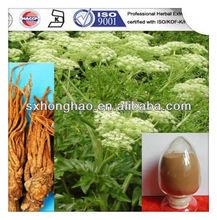 Natural 1% ligustilide Dong Quai Extract