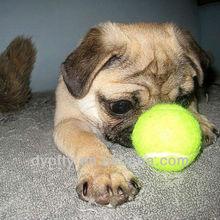rubber toy dog tennis balls