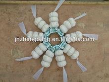 New crop fresh high quality natural garlic