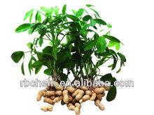 Estratto di alghe ascophyllum nodosum 18~20%