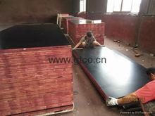 Trade Assurance waterproof shuttering building construction materials /shutteriing plywood