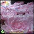 Preto flor branca desenhos para decoração de casa