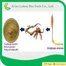 Natural Cordyceps Sinensis softgels for elder health