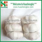 China snow white garlic