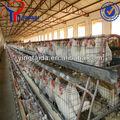 Capa de las aves de corral jaulas para Kenya granjas ( utilizado para pollos )