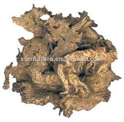 2.5% Triterpene Black Cohosh Extract