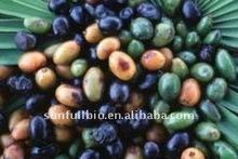 Saw Palmetto Herbal Extract / Fatty acid