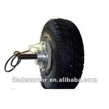 Single shaft hub motor